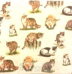 Macskás szalvéta